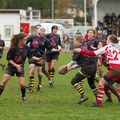 23IMG_0389T