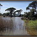 lac de Ste Eulalie Hyères