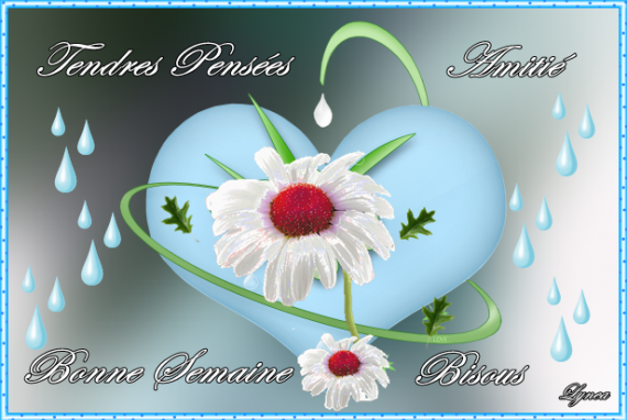 bonne-semaine-semaine-pensees-bisous-img