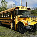 International 3700 school bus 1989-2002