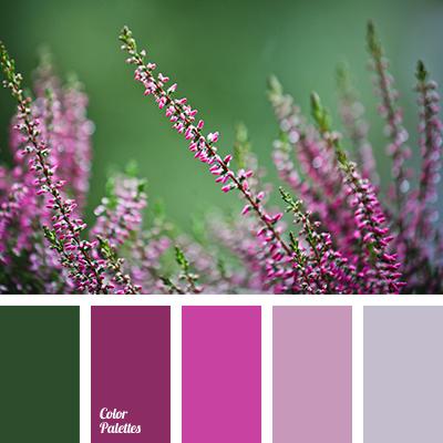 color-palette-2945