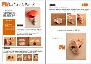 Image tutoriel SouriSo'