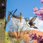 kolibrie-029VK-lr_1500x1500