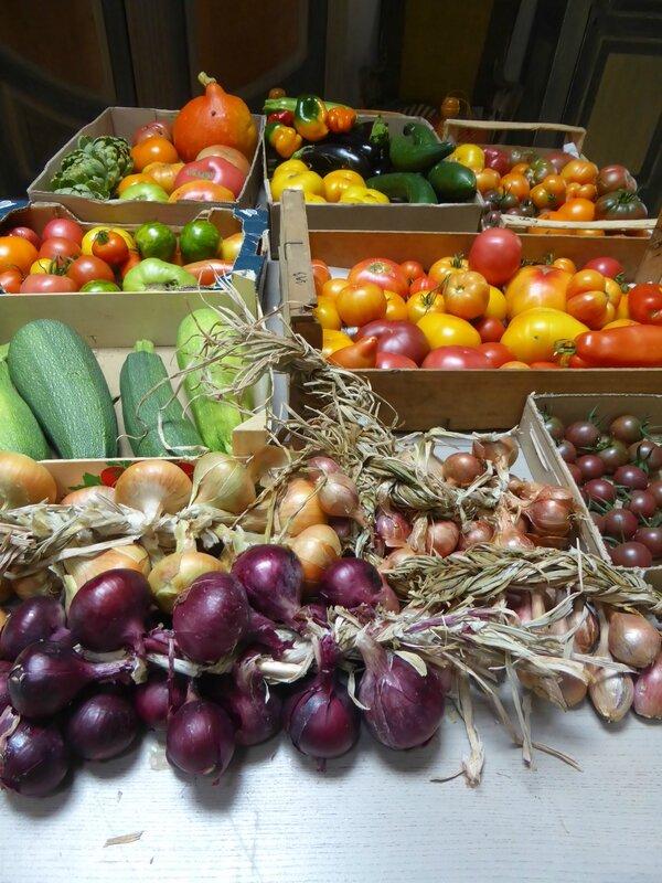 9-légumes export (1)
