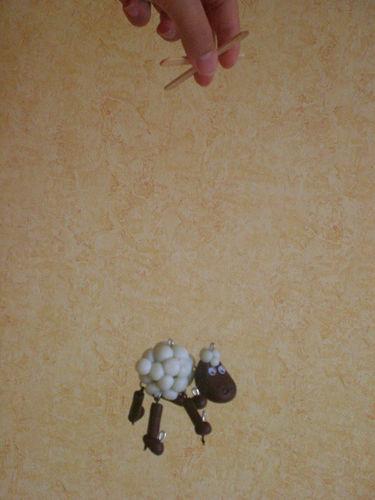n°35 - Le mouton de Bounty