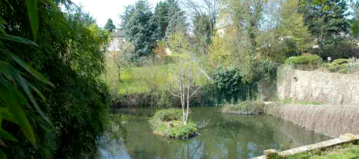 étang 2