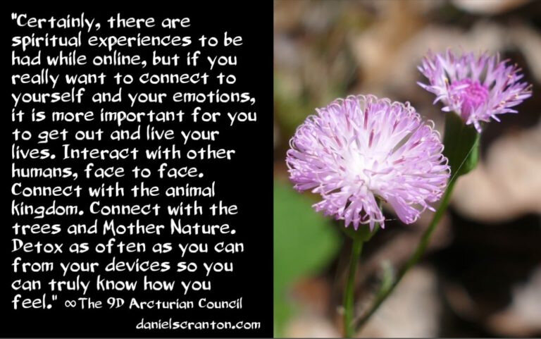 awakening-in-the-information-age-the-9th-dimensional-arcturian-council-channeled-by-daniel-scranton-768x481