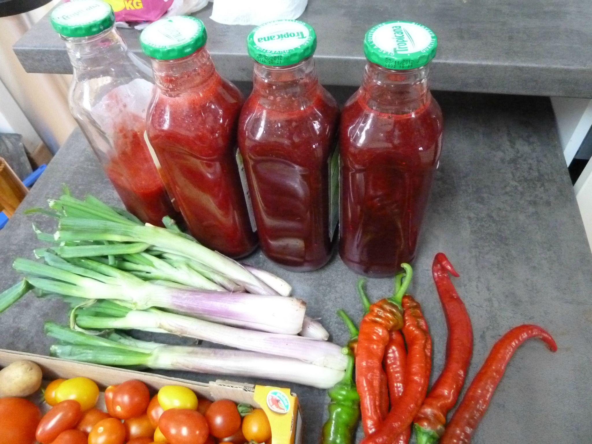 tomates, coulis de mûres et framboises, piments doux des landes, cives ou ciboules www.passionpotager.canalblog.com