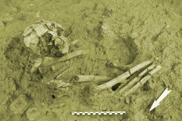 Nécropole découverte en 2015