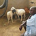 afrique 2011 069