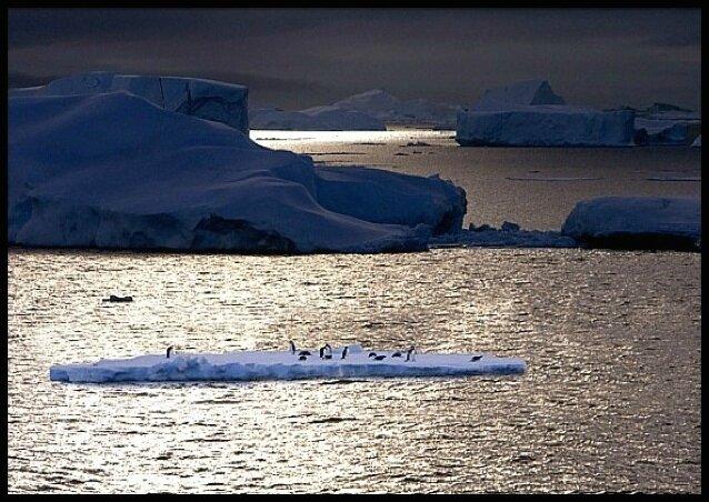 antarctique 150