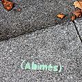 abimés (automne)_9267