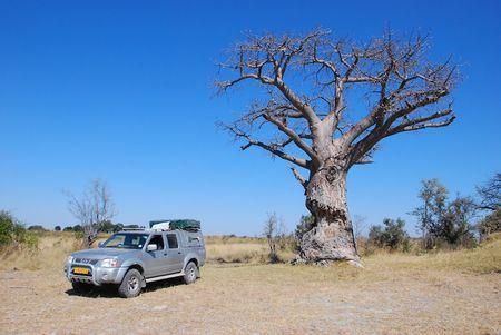Namibie (107) b