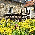 jardin printemps 2009 076