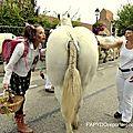 La jeune fille qui aimait les chevaux...