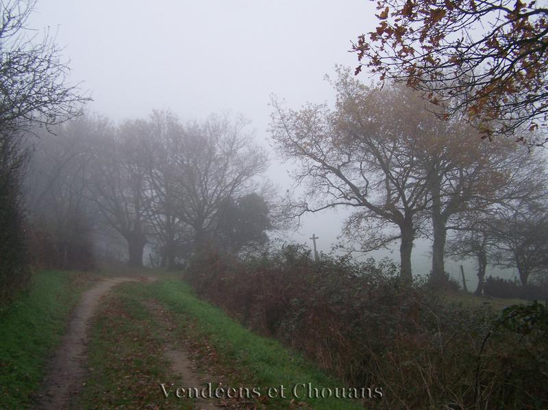 Mont des Alouettes 28