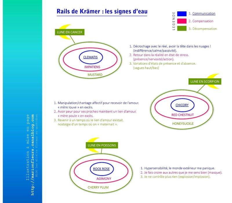 Rails de Krämer, 12 fleurs de communication, feu