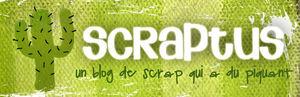 scraptus_copie