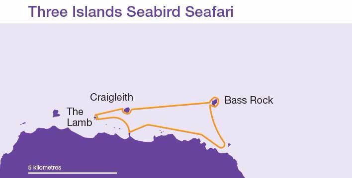 Three-Islands-Seabird-Seafa
