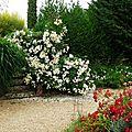 Jardin Poterie Hillen 12061673