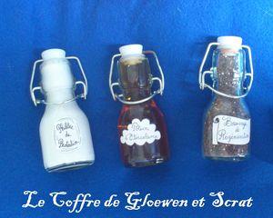 chez scrat et gloewen - swap philtres potions et sortilèges (8)