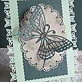 des papillons ...encore des papillons .....
