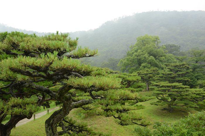 3 juillet Takamatsu Ritsurin 347