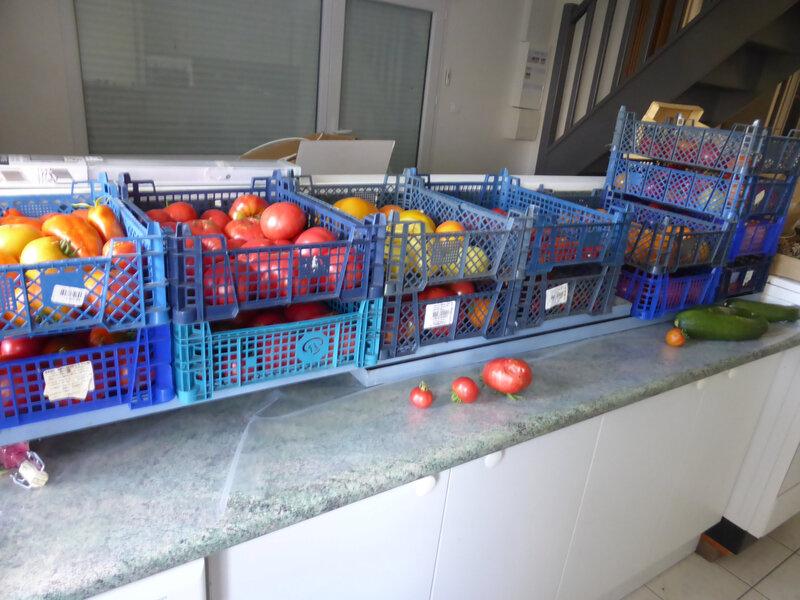 17-tomates (22)