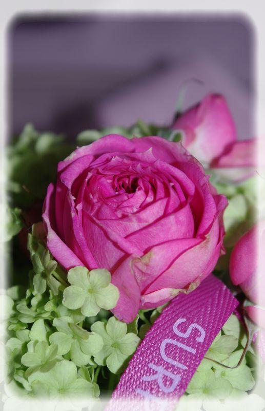 table_couleur_printemps_013_modifi__1