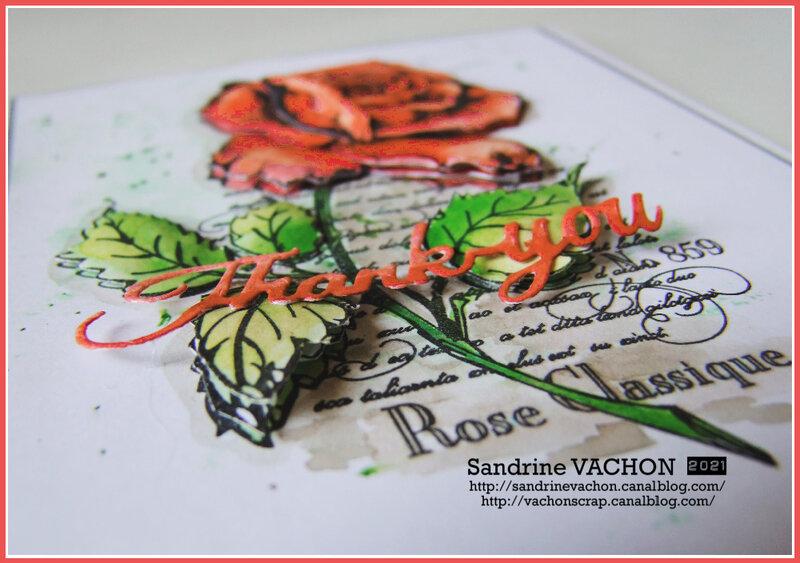 Sandrine VACHON 692 PCC pour Sophie M (4)
