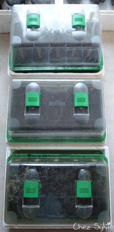 au 19-04-07 semis mini serres