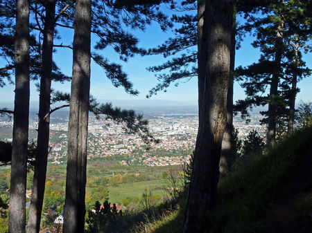 pano_clermont