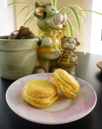 Macarons_