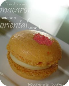 macaron oriental 270212