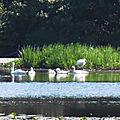 Fleurs de Cat et Balade au Lac 200618