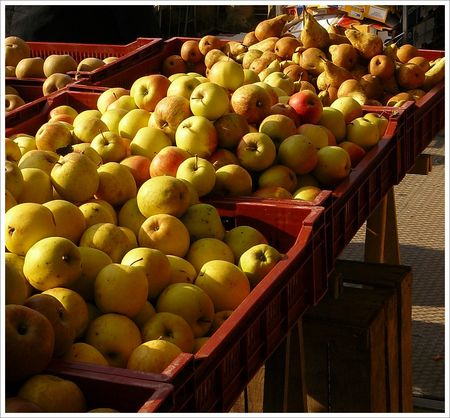 marche_pommes_poires