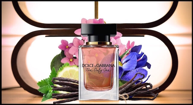 dolce et gabbana the only one 1