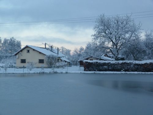 8 Décembre 2012 (9)