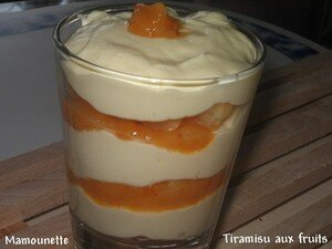 Tiramisu_aux_fruits__kaki_ananas_abricots__010_r_tr_cie_blog