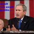 bush petite