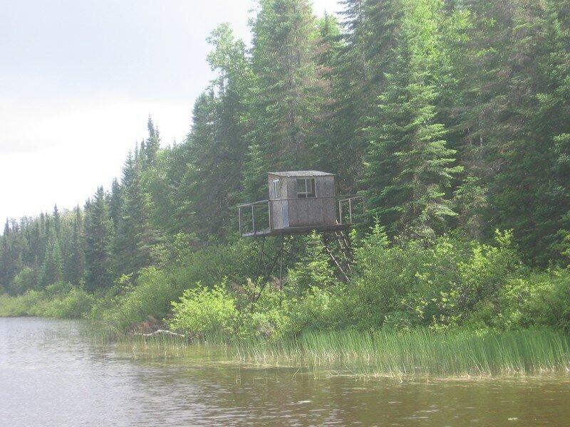 Cache de chasseur à l'orignal Lac Turgeon