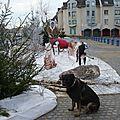 Cruf dans la neige