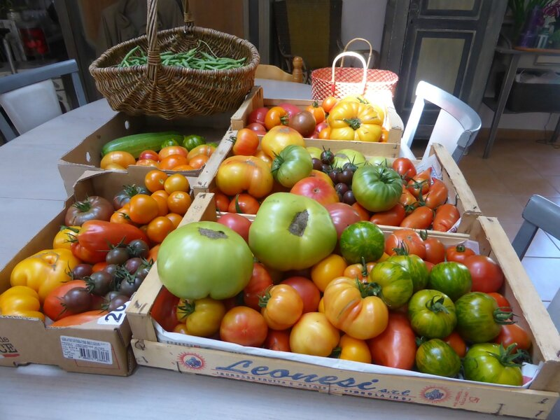 15-tomates (9)