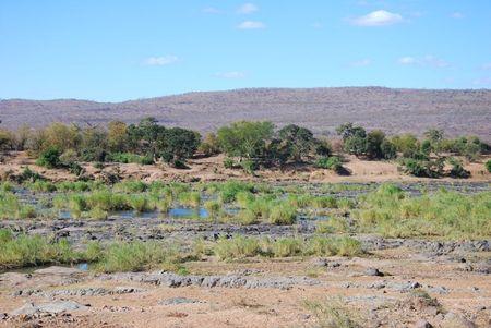Afrique du Sud (312)