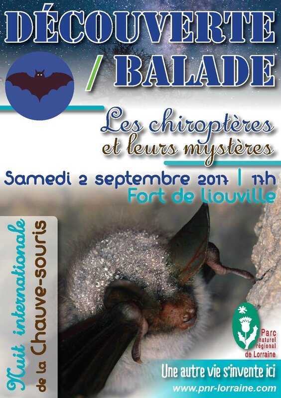 Flyer Nuit internationnale chauve-souris 20173_Page_1