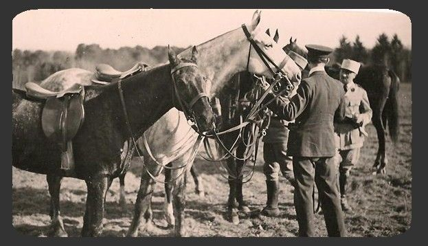 SOLOGNE 1920 Equipage de Cheverny Archives Maul-on 001