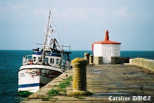 Barfleur_1020018_copie