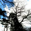 Le ciel ...