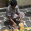 Amrita au coco : le modèle