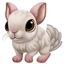 icon_chinchilla_adult_pinkwhite_128-e9ca33f1bc04195c8e98ffa2